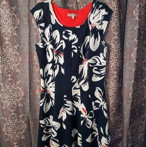 Robbie Bee dress ~EUC~ XL